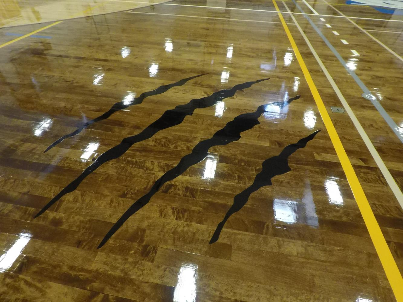 Centereach High School Gym Claw Marks